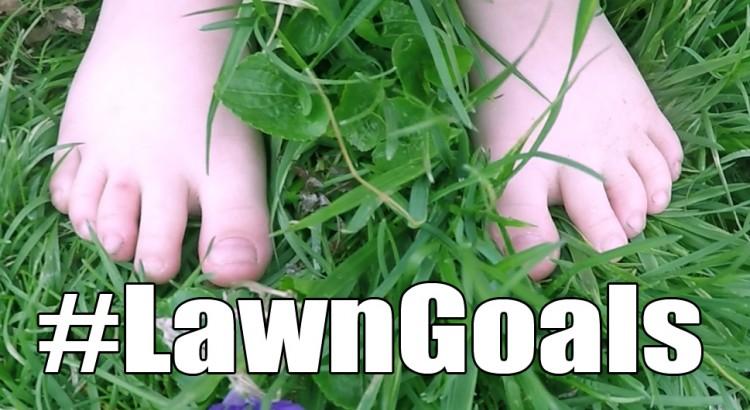 LawnGoals-Alex
